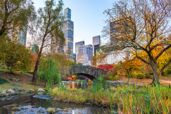 Central Park during autumn in New York City - Stock Photo - Images
