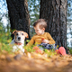 Small kid in yellow sweater with white dog - PhotoDune Item for Sale