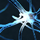 Neuron Cells Impulse And Synapse Activity Network - VideoHive Item for Sale