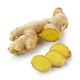 ginger on white background - PhotoDune Item for Sale