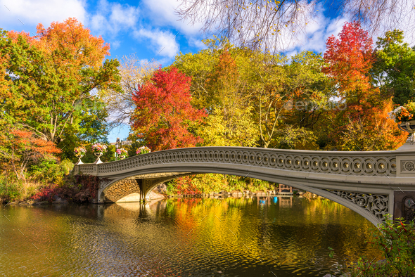 Central Park New York - Stock Photo - Images
