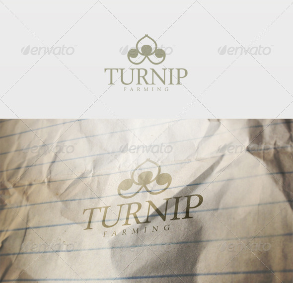 Turnip Logo - Vector Abstract
