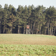 Autumnal landscape with wooden hunting tower on the edge of forest. - PhotoDune Item for Sale