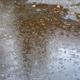 Rain - PhotoDune Item for Sale