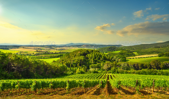 Sunset landscape in Maremma. Rolling hills and cypress trees. Casale Marittimo,Tuscany, Italy - Stock Photo - Images
