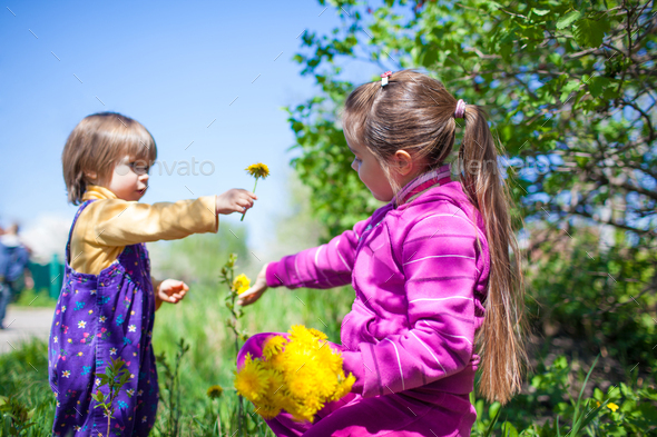 Girl sitting on grass and giving blooming yellow dandelion flower to small boy - Stock Photo - Images