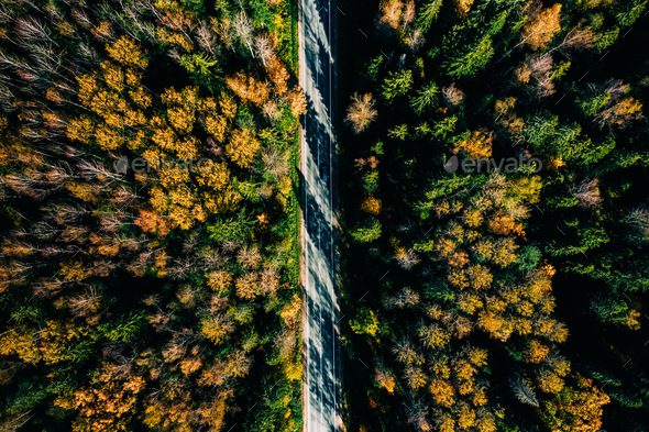 Aerial view of road in autumn forest. - Stock Photo - Images