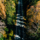 Aerial view of road in autumn forest. - PhotoDune Item for Sale