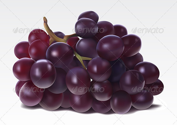 Grape - Food Objects