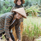 close up of farmers smiling while tying rice plants and bringing their crops - PhotoDune Item for Sale