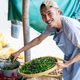 greengrocer man weighs green chili and carries tray of green chili - PhotoDune Item for Sale
