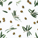 seamless pattern with green olive and branches - PhotoDune Item for Sale