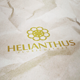 Helianthus Logo - GraphicRiver Item for Sale
