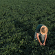 Aerial view of soybean farmer working in the field from drone pov - PhotoDune Item for Sale