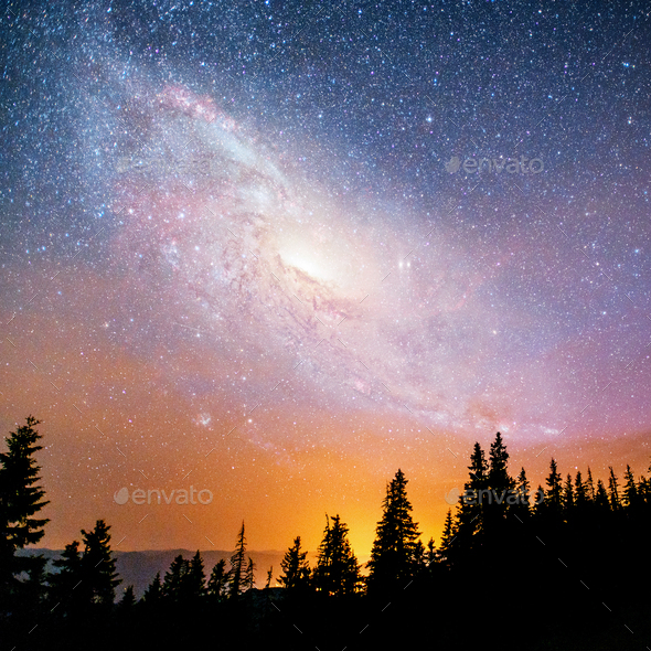 Fantastic starry sky and the milky way above the pinnacles of the pines. Courtesy of NASA - Stock Photo - Images