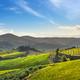 Radda in Chianti vineyard and panorama at sunset. Tuscany, Italy - PhotoDune Item for Sale