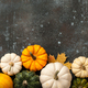 Happy Thanksgiving background with decorative pumpkins - PhotoDune Item for Sale