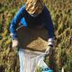 Farmer on rice field - PhotoDune Item for Sale