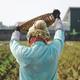 Farmer at harvest season - PhotoDune Item for Sale