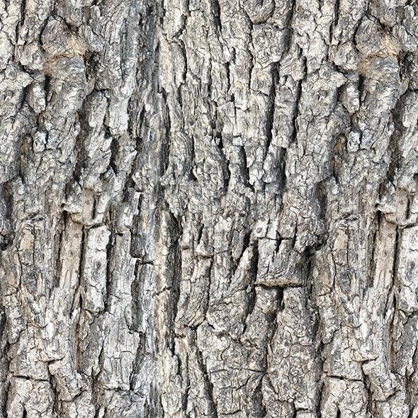 Tileable Wood Bark Texture