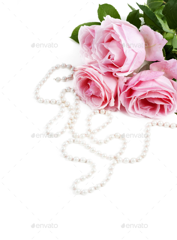 Roese and pearls - Stock Photo - Images