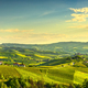 Langhe vineyards sunset panorama, Grinzane Covour, Piedmont, Italy Europe. - PhotoDune Item for Sale