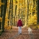 Man with dog autumn forest - PhotoDune Item for Sale