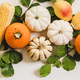 Fall layout with pumpkins, fruits, corn and leaves, wide composition - PhotoDune Item for Sale
