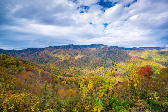 Great Smoky Mountains National Park, Tennessee, USA - Stock Photo - Images