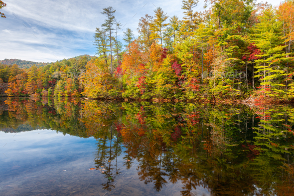 Lakeside Fall Foliage - Stock Photo - Images