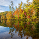 Lakeside Fall Foliage - PhotoDune Item for Sale