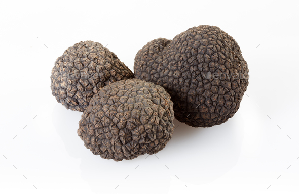 Black truffles isolated on white, clipping path included - Stock Photo - Images