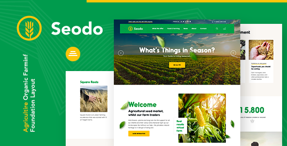 Seodo | Agriculture Farming Foundation WordPress Theme