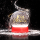 Snow Globe Logo - VideoHive Item for Sale