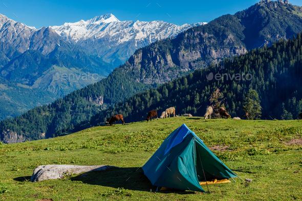 Camp in mountains. Kullu Valley, Himachal Pradesh, India - Stock Photo - Images