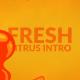 Citrus Intro - VideoHive Item for Sale