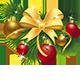 Christmas Holidays Have Come