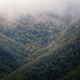 Fog covered forested slopes show early autumn hues - PhotoDune Item for Sale
