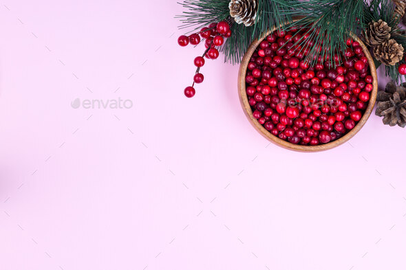 Pine branch with cones and bowl of fresh cranberry - Stock Photo - Images