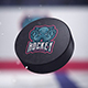 Hockey Logo Reveal 3 - VideoHive Item for Sale