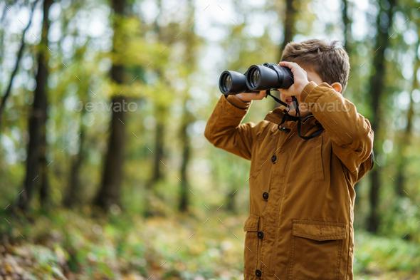 Boy exploring nature - Stock Photo - Images