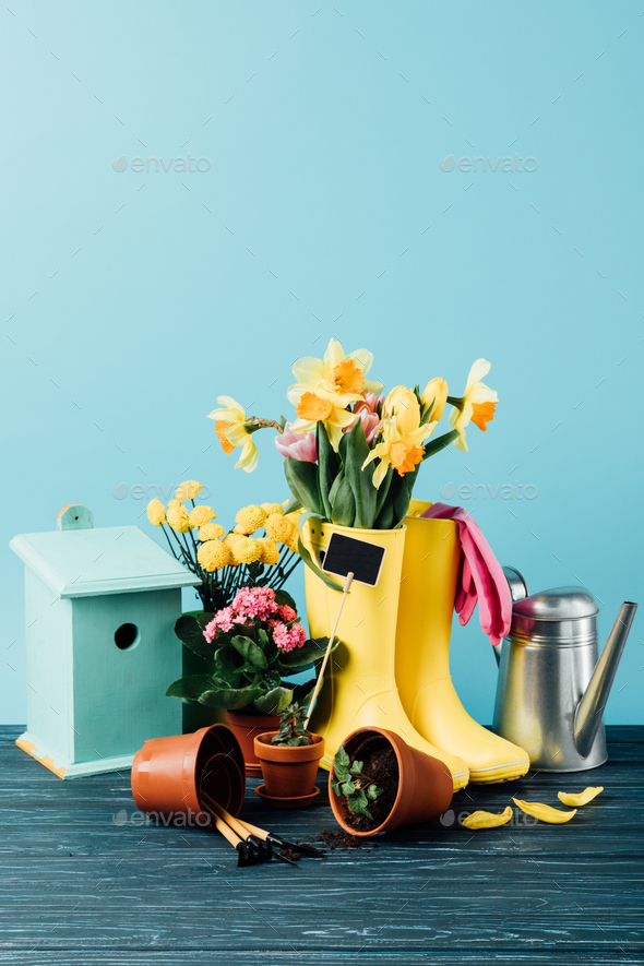 close up view of arranged rubber boots with flowers, flowerpots, gardening tools, watering can and - Stock Photo - Images