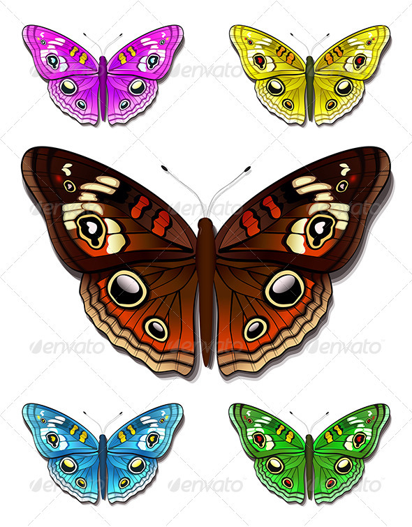 Multicolored butterflies - Characters Vectors