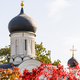 dome Church of Conception of Saint Anne in Moscow - PhotoDune Item for Sale