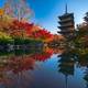 The wooden pagoda of Toji Temple with beautiful maple leaves, Kyoto, Japan - PhotoDune Item for Sale