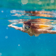 Beautiful woman underwater snorkeling in the clear tropical water - PhotoDune Item for Sale