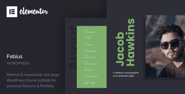 Extraordinary Fabius - Resume WordPress Theme