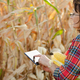 Middle age brunette caucasian female farm worker in glasses with digital tablet - PhotoDune Item for Sale