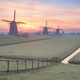 Frost on the meadow with three windmills at sunrise - PhotoDune Item for Sale