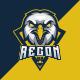 Eagle Recon Gaming Logo For Esports